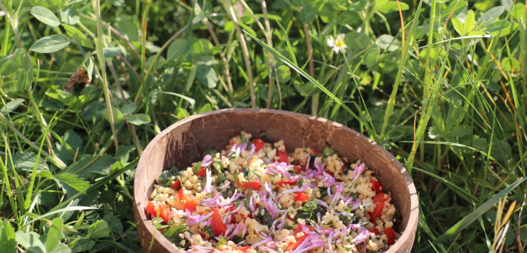 Foraged Red Clover Recipe: Wild Tabbouleh